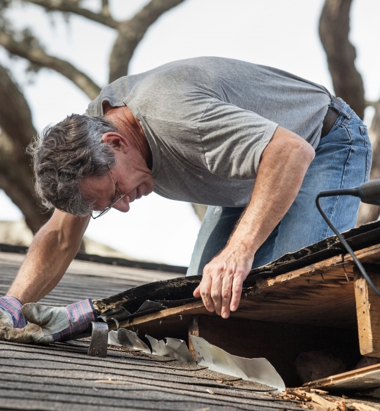 Close up view of man using crowbar and saw to remove rotten wood from leaky roof decking. After removing fascia boards he has discovered that the leak has extended into the beams and decking.