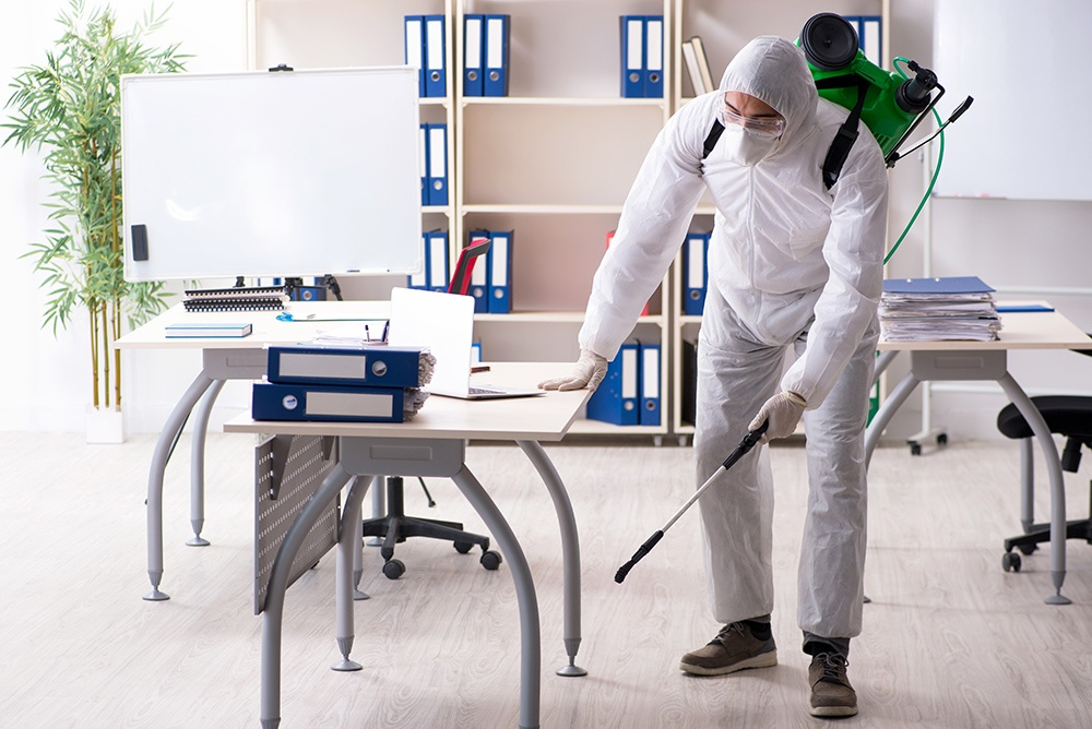Professional contractor in PPE at office